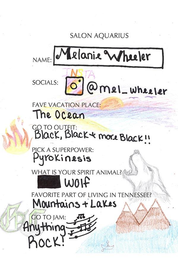 Melanie Wheeler Bio knoxville hair stylist